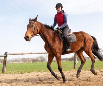 Equitazione: come iniziare