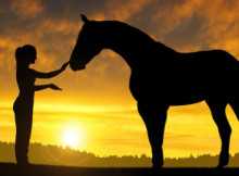 la-doma-del-cavallo-2.jpg