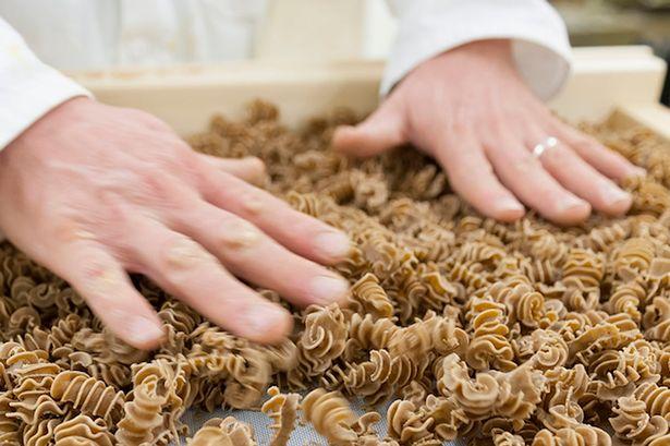 Pasta di farina di insetto