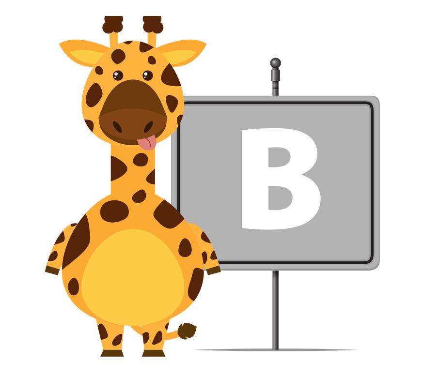 Animali che iniziano con la B